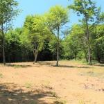 【売土地 817坪 899万円 長坂町】森に囲まれた広い土地