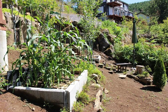 家庭菜園などのスペース