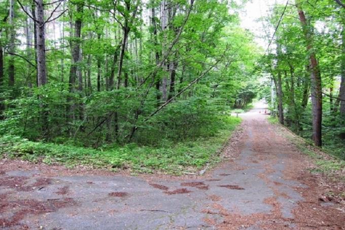 【Ⓑ区画】南側私道と敷地(写真左側)