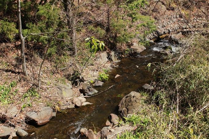 近くを流れる川
