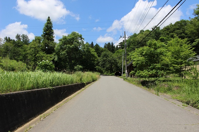 前面道路(南から撮影)