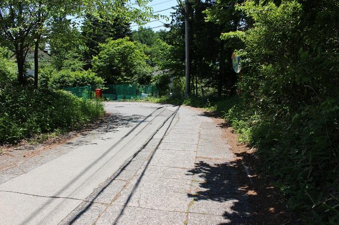 物件南東の端から繋がる舗装公道(北から撮影)