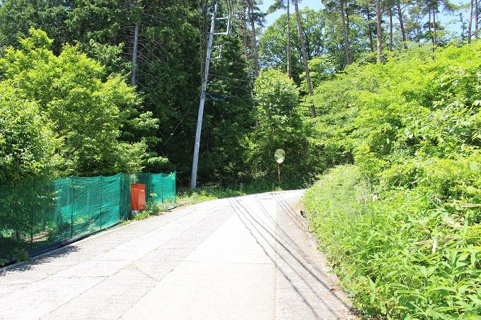 物件南東の端から繋がる舗装公道(南から撮影)