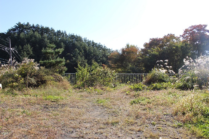 南側の庭スペース